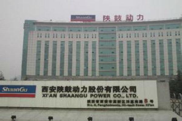 西安陕股动力股份有限公司
